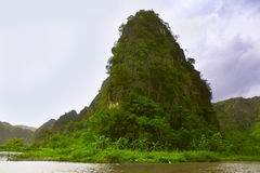 Travelling along rice fields on Tam Coc stream, Ninnh Binh, Viet Royalty Free Stock Image