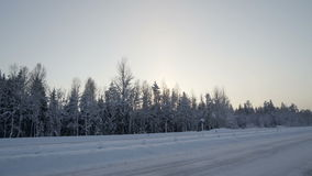 Travelling along the snowy road in Scandinavia. With the forest on the roadside with trees filled with white snow stock video