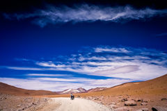 Travelling through Altiplano Royalty Free Stock Image