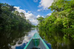 Travelling by boat into the depth of Amazon Jungles in Cuyabeno National Park, Ecuador.  stock image