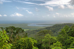 Travelling the Daintree National Park Royalty Free Stock Photography