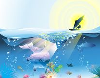 The Travelling Delphine. A surfer is exploring the ocean together with a delphine Royalty Free Stock Image