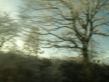 Travelling at high speed. Photo taken through the train window of the passing trees stock photography