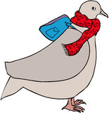 Travelling pigeon. Fat pigeon with rucksack and scarf Stock Image