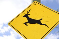 Travel to Canada-Wildlife sign- billboard or front cover for magazines royalty free stock photography