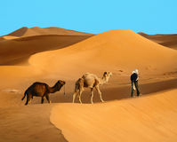 Travelling in Sahara desert Royalty Free Stock Photos