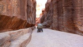 Travelling the Siq, Petra Royalty Free Stock Photography
