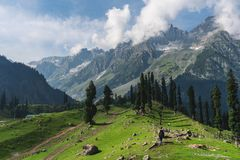 Travelling in summer, a man with backpack walking on meadow and pine forests with mountain view in the morning at Sonamarg, Jammu. Travelling in summer, a man royalty free stock images