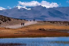 Travelling in Tibet:The Pilgrim People Royalty Free Stock Images