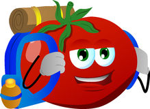 Travelling tomato Royalty Free Stock Image