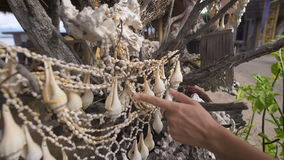 She travels to Bali. While walking she saw a tree on which hung the shells. She holds a hand on them, and enjoys making. Sounds. Street markets offer a wide stock video footage