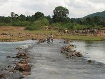 Traversée de la rivière Photo libre de droits