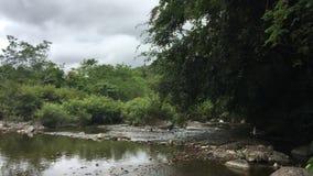 traversée de la rivière 13 banque de vidéos