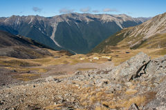 Travers valley in Nelson Lakes National Park Stock Photo