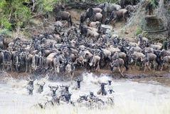 Traversata di Mara Fotografie Stock Libere da Diritti