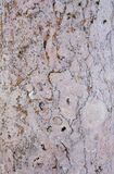 Travertin - Sandstone quality background Royalty Free Stock Images