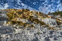 Travertin-Terrassen an Mammoth Hot Springs - Yellowstone Nationalpark lizenzfreie stockfotografie