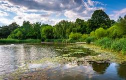 Travertine im Teich bei Patterson Park in Baltimore, Maryland Stockbilder