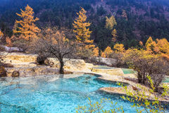 Travertine ponds in autumn forest Royalty Free Stock Photos