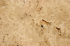 Travertine-stone background - close-up Royalty Free Stock Photography