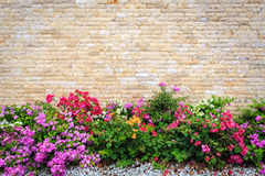 Travertine stone wall and decorative garden Stock Photo