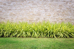 Travertine stone wall and decorative garden Royalty Free Stock Photo