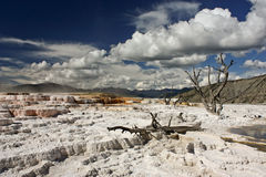 Travertine Terrace in Yellowstone NP. Magic beauty of Colorful Travertine Terraces in the Oldest National Park of the World royalty free stock photography