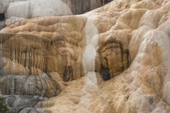 Travertine terraces loom over Mammoth Hot Springs, Yellowstone P Stock Photo