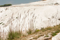 Travertine terraces at Pamukkale Royalty Free Stock Photos
