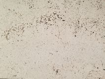 Travertine from Vienna, natural stone, for the facade and decoration of the building. Background texture stock photo
