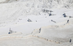 Travertines in Pamukkale Stock Image