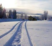Travesía ártica Imagenes de archivo
