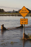 Travesía común durante la inundación Imágenes de archivo libres de regalías