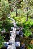 Travesía de la cala en el rastro al lago solitario pine, sierras del este, California fotografía de archivo
