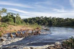 Travesía de río africana el bosque con el puente antiguo foto de archivo libre de regalías