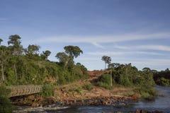 Travesía de río africana el bosque con el puente antiguo fotografía de archivo libre de regalías