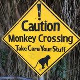 Travesía del mono de la precaución Imágenes de archivo libres de regalías
