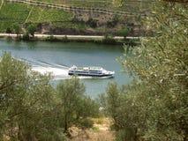 Travesía del río a través de viñedos Imagen de archivo libre de regalías
