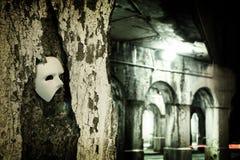 Travestimento - fantasma della mascherina di opera Immagini Stock Libere da Diritti