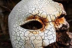 Travestimento - fantasma della mascherina di opera Fotografie Stock Libere da Diritti
