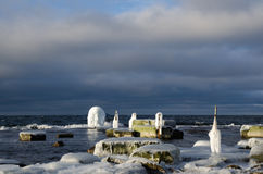 Travi coperte di ghiaccio Immagine Stock Libera da Diritti
