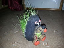 Travyanchik. Toy hedgehog to grow ornamental grass at home Royalty Free Stock Images