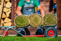 Traw murawy Staczać się na furze Zdjęcie Royalty Free