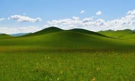 Traw pola i słońca niebo z piękną chmurą Fotografia Stock