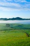 Traw pola i słońca niebo z piękną chmurą Zdjęcia Stock