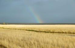 Traw równiny i tęcza krajobraz Obrazy Royalty Free