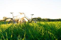 trawa bicykle i przedpole obrazy stock