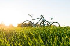 trawa bicykle i przedpole zdjęcie stock