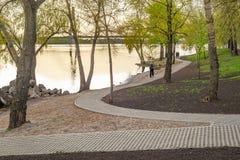Trawa Blokowi brukarze w parku Obrazy Royalty Free