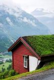 Trawa dach Obrazy Stock